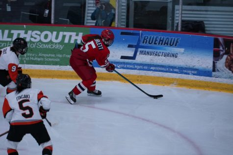 Preview: Women's hockey will attempt to tame Lindenwood Lions